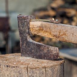 Did you fell 100 oak wood trees to build your house?