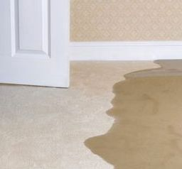 Flood is major problem for carpet floors